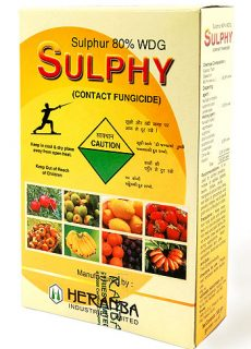brands_sulphy