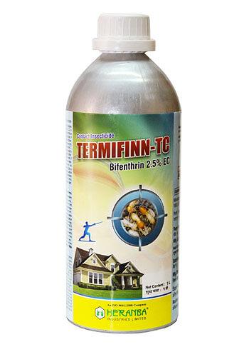 Termifinn