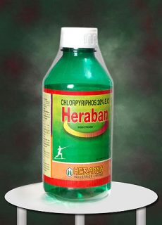 insect_heraban