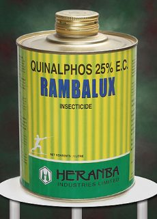 insect_rambalux