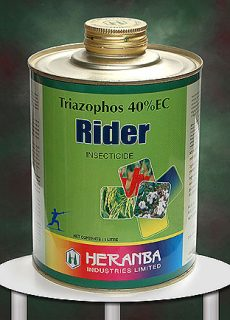 insect_rider