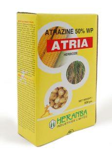 Atria
