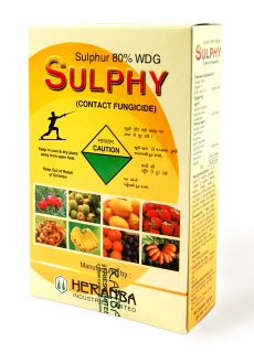 Sulphy