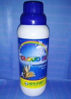 cloud_58