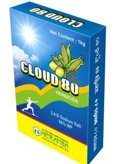 cloud_80