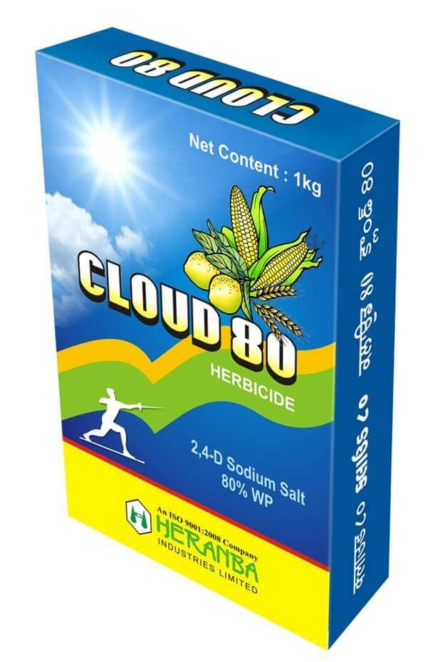 Cloud 80