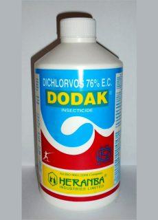 dodak_new