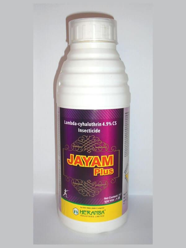 Jayam Plus