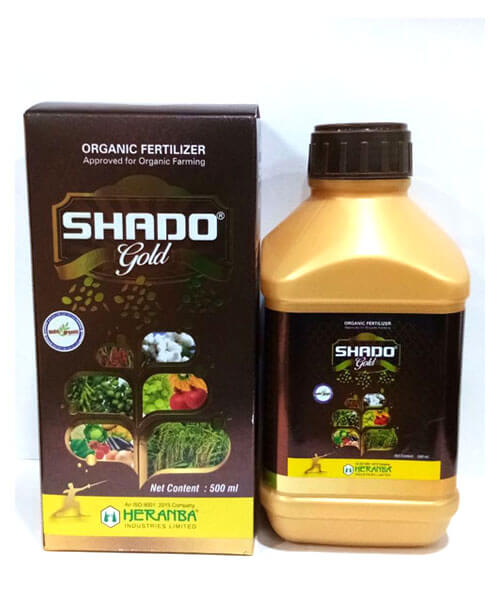 SHADO GOLD